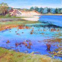 Bingie Wetlands