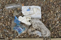 bottle, plastic bag, styrofoam, rope, pieces of plastic containers, icecream wrapper, balloon