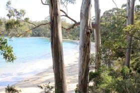 beach, tasmania