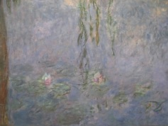 detail from Monet's waterlilies