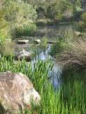watery dam in soft light