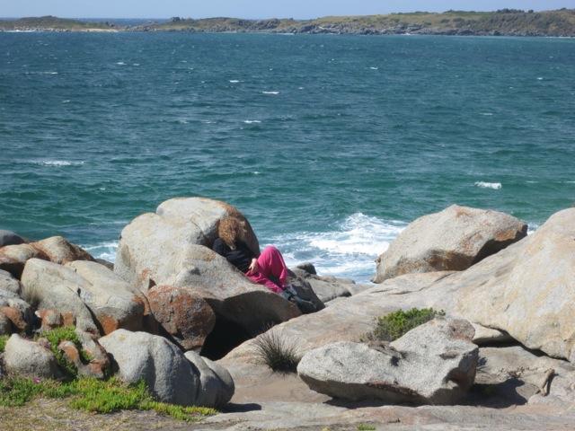 sheltering at Grey Rocks