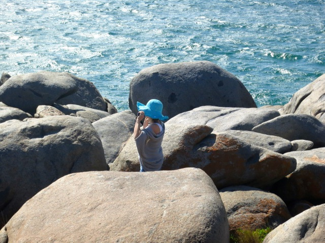 in the sea breeze at Grey Rocks