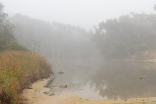 the lagoon in a foggy veil
