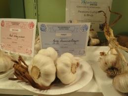 upriver garlic