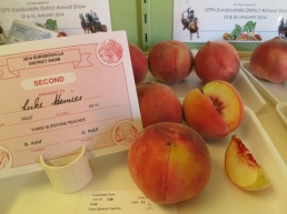 peaches, 2nd prize