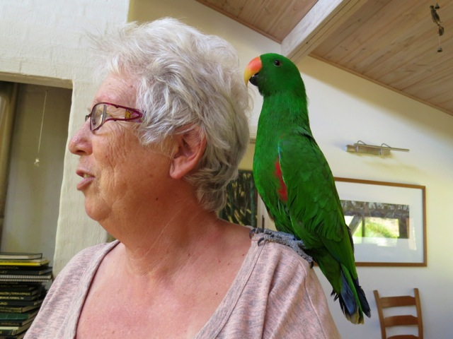 parrot on her shoulder