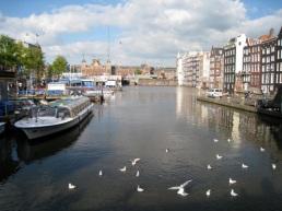 wider harbour