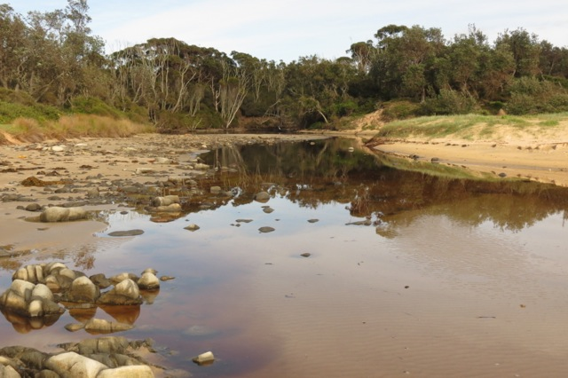 Mullimburra ICOLL open and flowing out